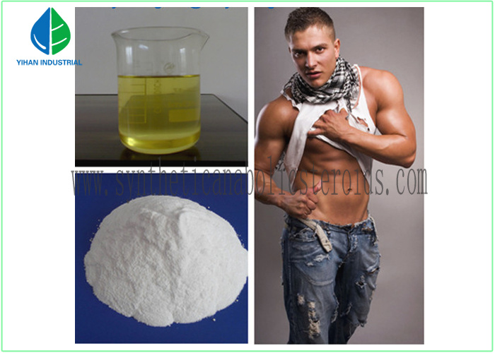 Testosterone Enanthate Anabolic Steroid Powder for Muscle Building