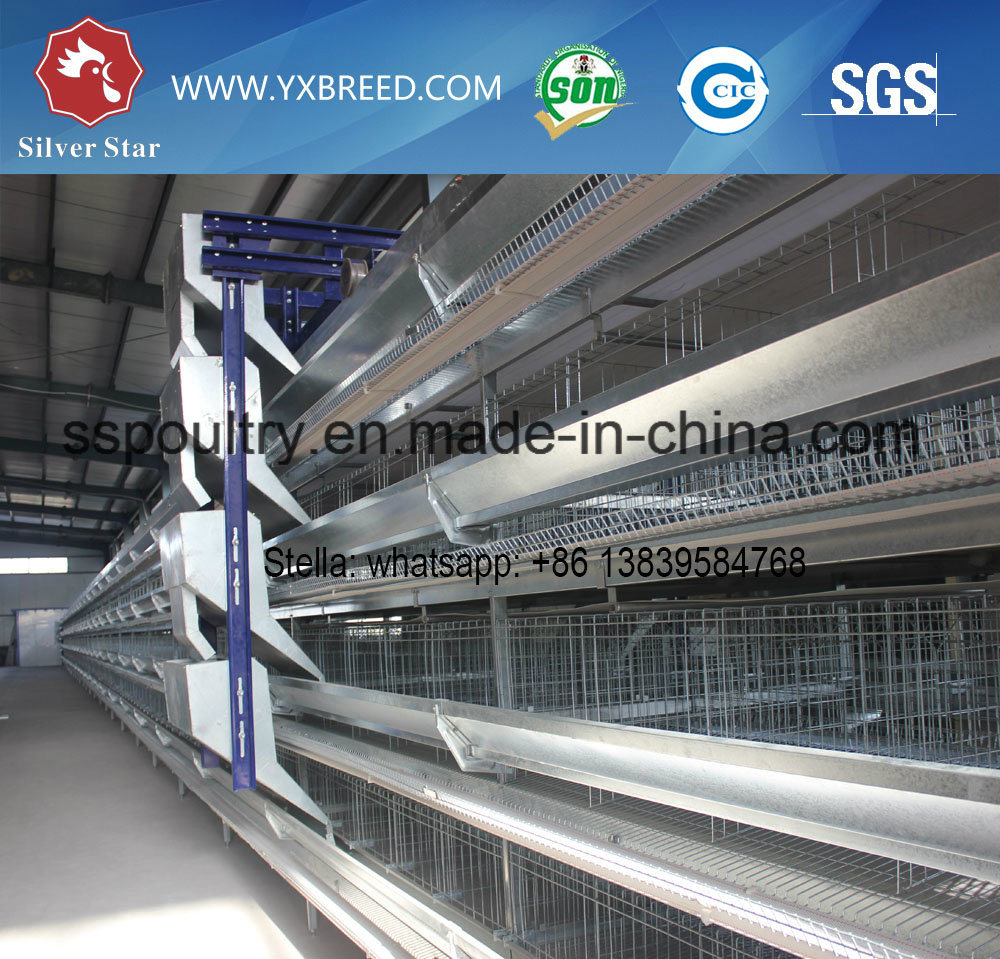 H Type Galvanized Layer Cage for Egg Chicken