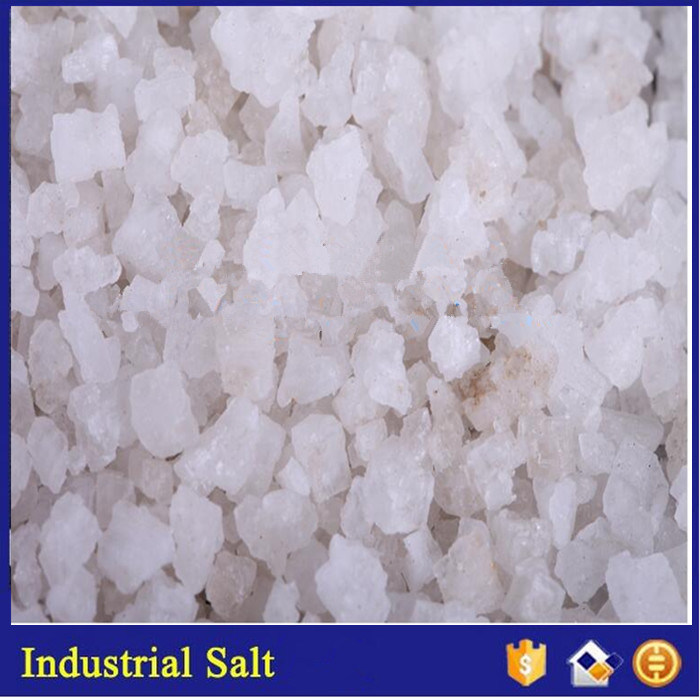 China Manufacturer Produce Sea Salt