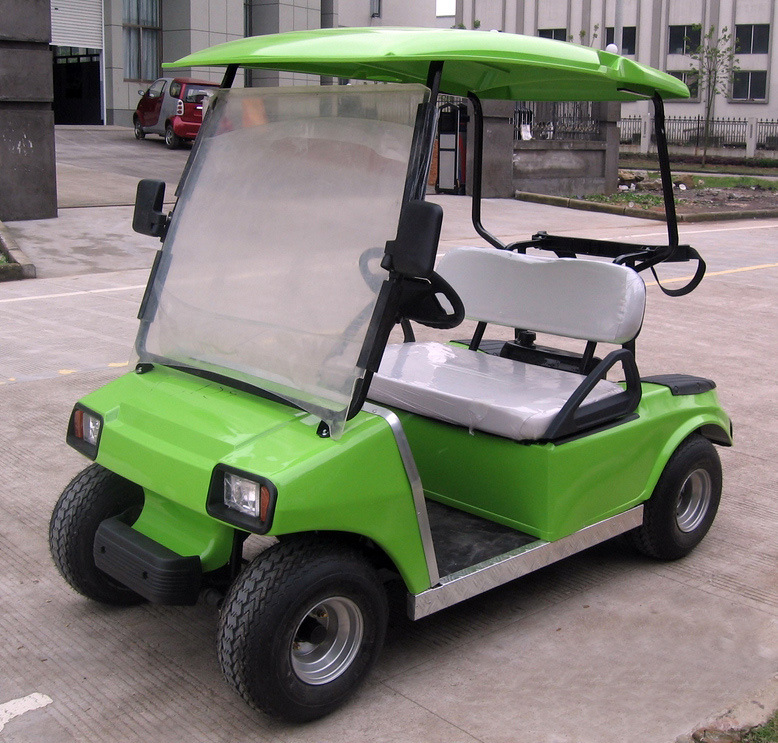 3000 W Electric Power Golf Cart / Club Car
