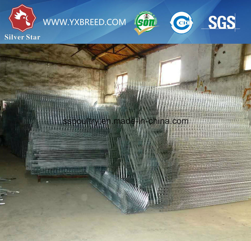 Chicken Egg Layer Cage to Uganda/UAE (A-4L120)