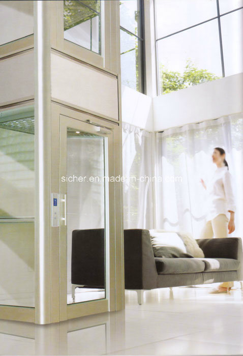 Indoor Villa Elevator Without Machine Room