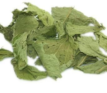Stevia Leaves Healthy Tea