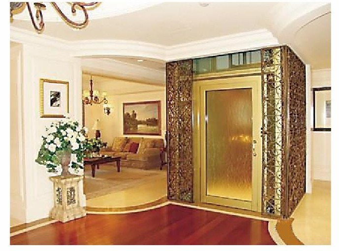 China 400kg house elevator vvvf mrl ll 110 china house for Elevator house