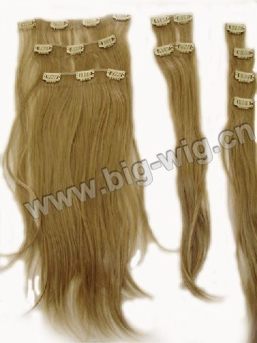 Clip in Hair Extensions (CoH-003)
