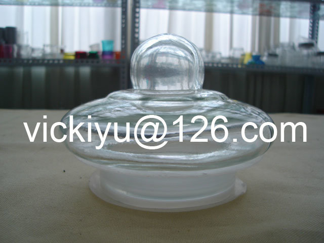 Large Food Glass Container, Big Glass Jars with Glass Lid
