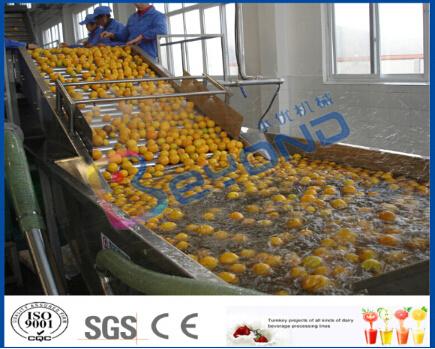 Concentrated Orange Juice Processing Line