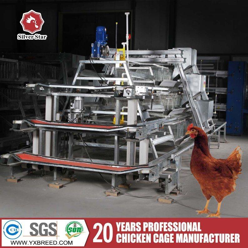 Zambia Lusaka Layer Chicken Farm Poultry Equipment