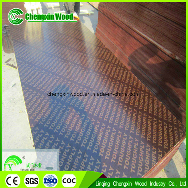 Good Quality Film Faced Plywood/Shuttering Plywood at Competitive Price