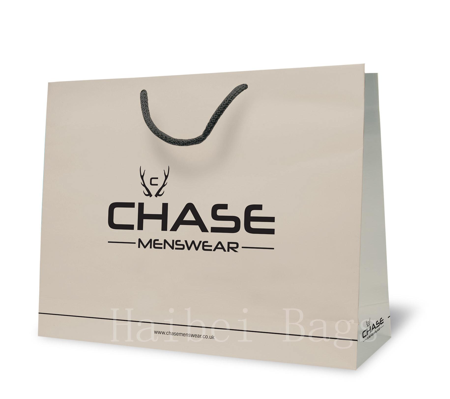 Kraft Paper Gift Shopping Bag for Packaging (HBPB-67)