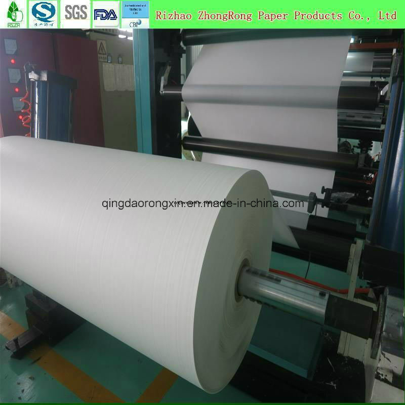 Single PE Coated Paper for Hot Drinking Cup