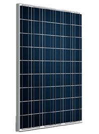 Poly Solar Panel 190W (CNSDPV190(48)P6-50/45)