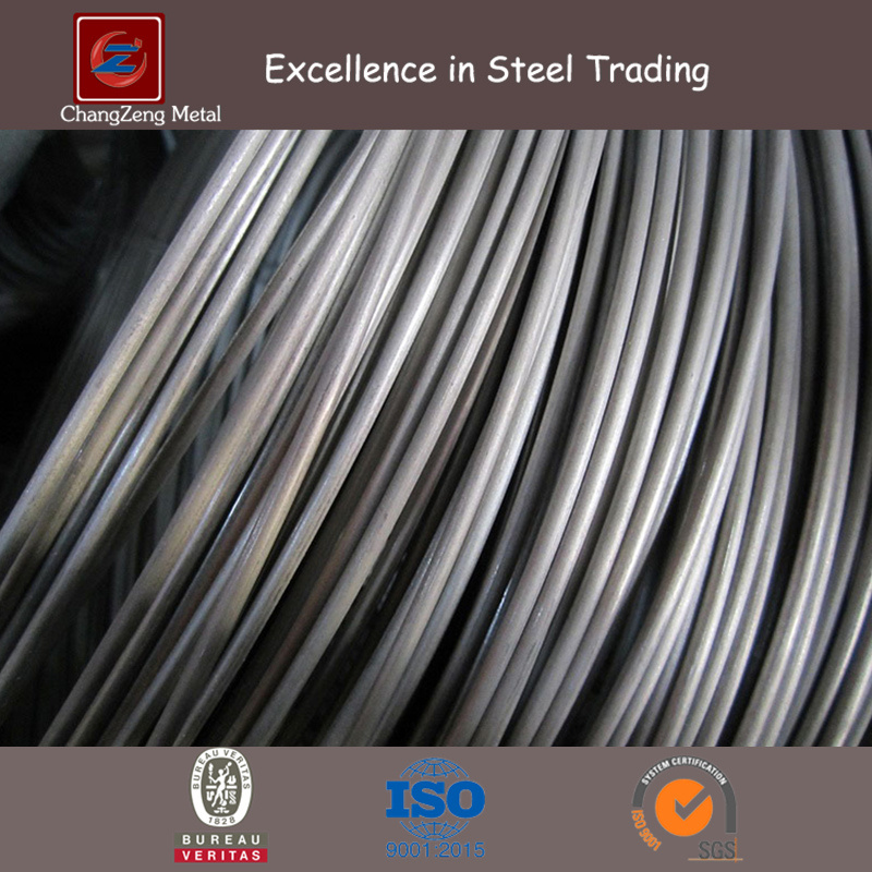 Spring Stainless Steel Wire (CZ-W48)