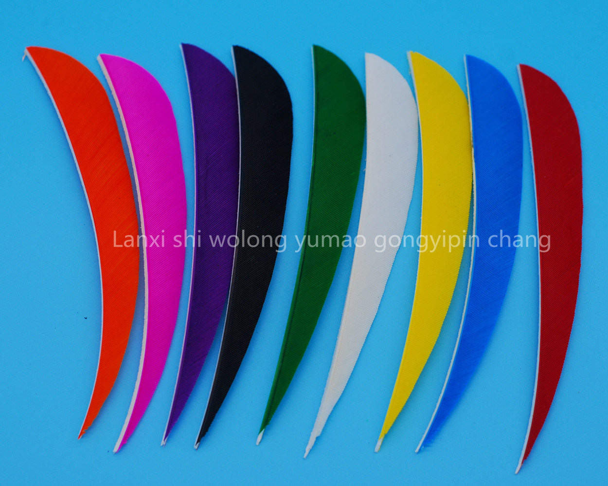 5 Inch Right Wing Parabol Feather for Archery