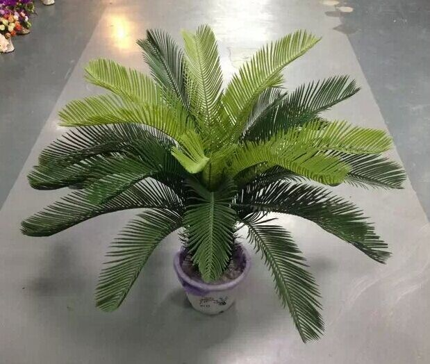 Artificial Plants of Cycas Gu-Yy-Cycas