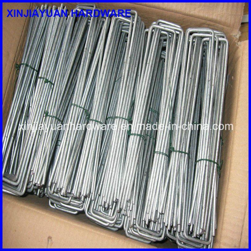 Galvanized Steel U Shape Wire SOD Staple, Landscape Staple