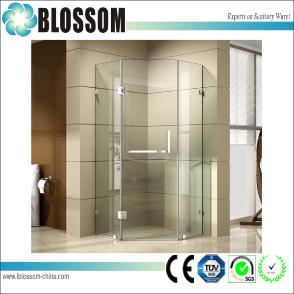 Contemporary Diamond Pivot Glass Hinge Shower Room (BLS-V9929)
