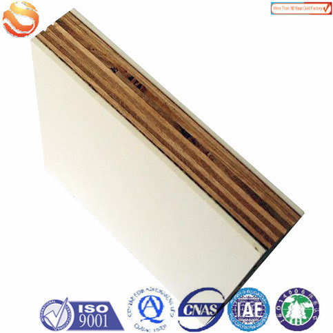 FRP Sandwich Panel for Construction