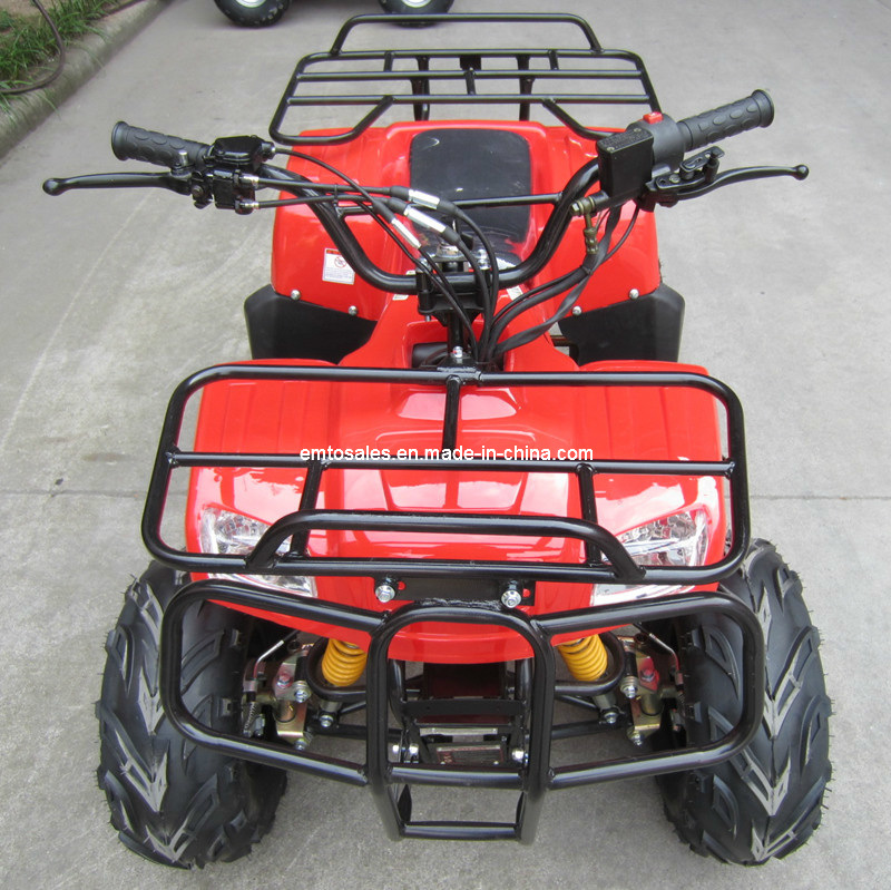 50CC-110ATV Quads Can with 7ah Big Electric Start Battery (ET-ATV014)