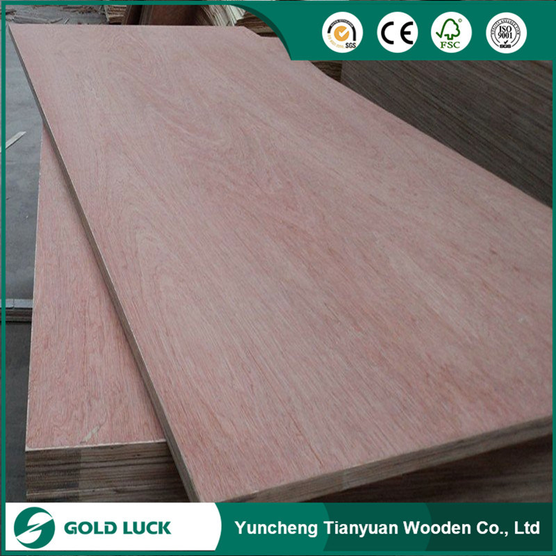Hot Sale Commercial Plywood with High Grade Cheapest Pirce
