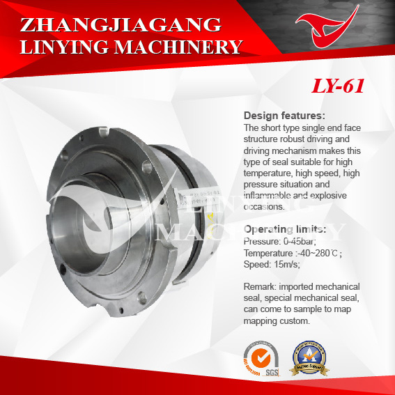 Mechanical Seal (LY-62)
