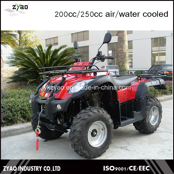 200cc Big ATV Farm UTV with Big Tyre for Sale
