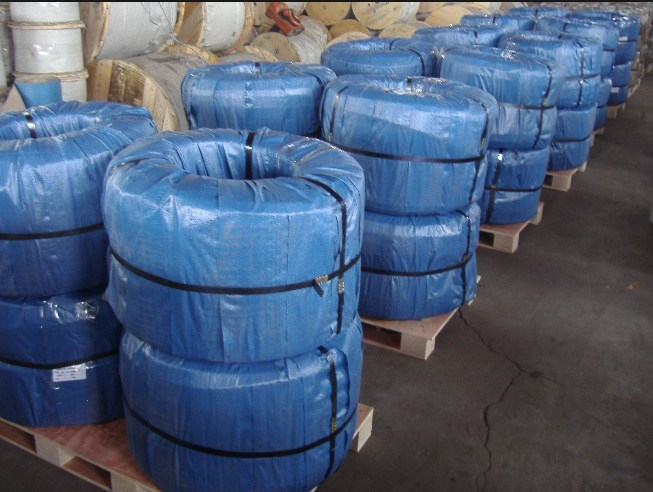 Steel Wire Rope (6x24+7FC)