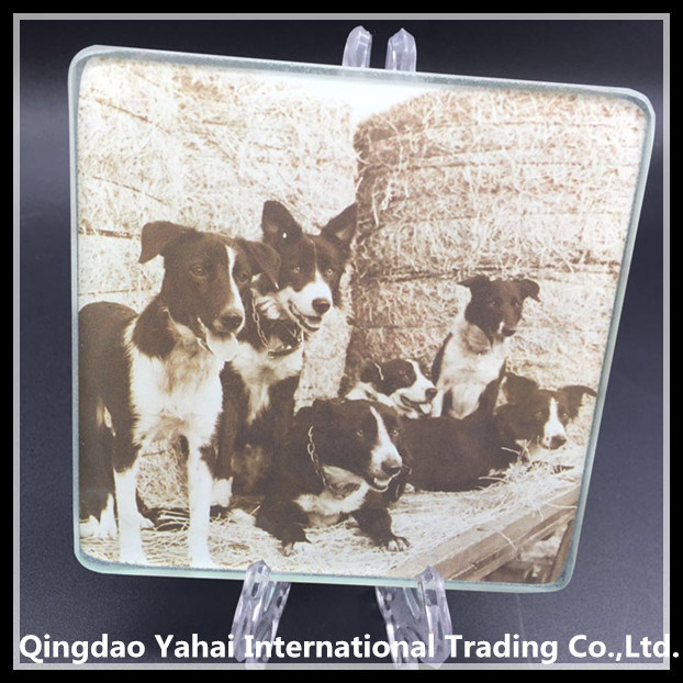 5mm Tempered Glass Coaster with Dog Pattern