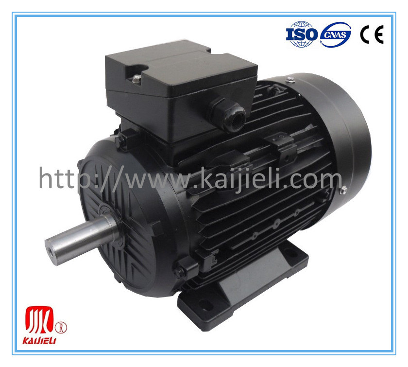 IE2 High Efficiency Three Phase Electric Motor (Black, Cast Iron)