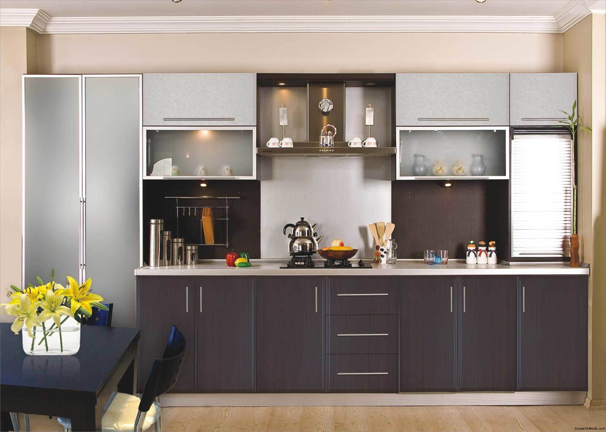 Ritz Custom Brown Acrylic Finish Kitchen Cabinet /Kitchen Furniture