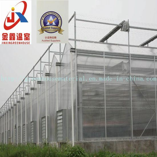 Mordern Polycarbonate Sheet Intelligent Greenhouse