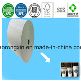 PE Coated Paper for Starbucks Disposable Coffee Paper Cups