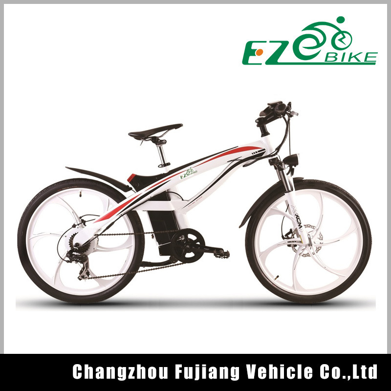 City E-Bike with Lithium Battery 250W 500W