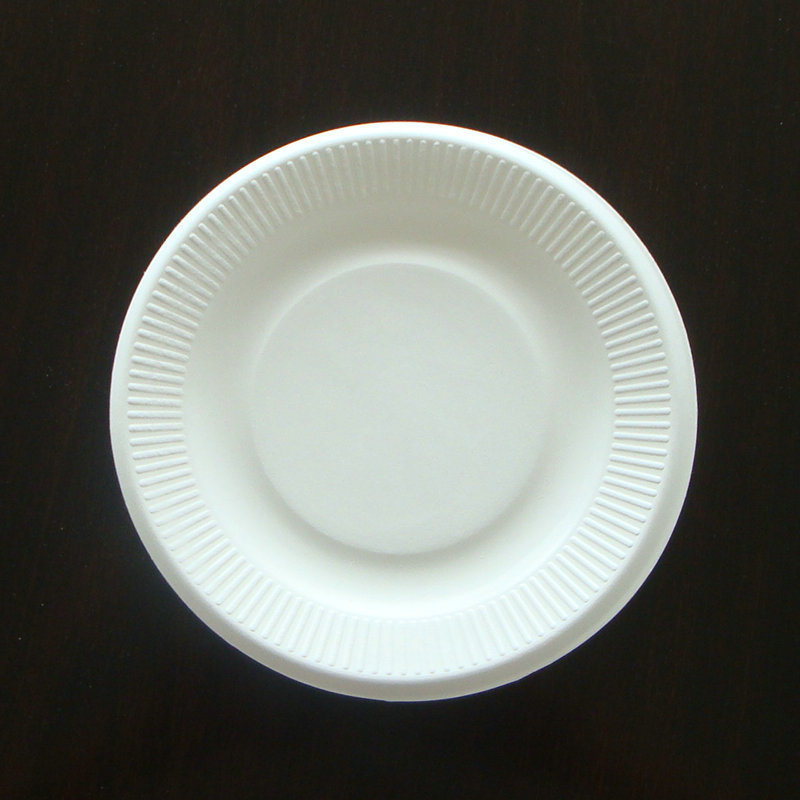 Disposable Biodegradable Sugarcane Plate