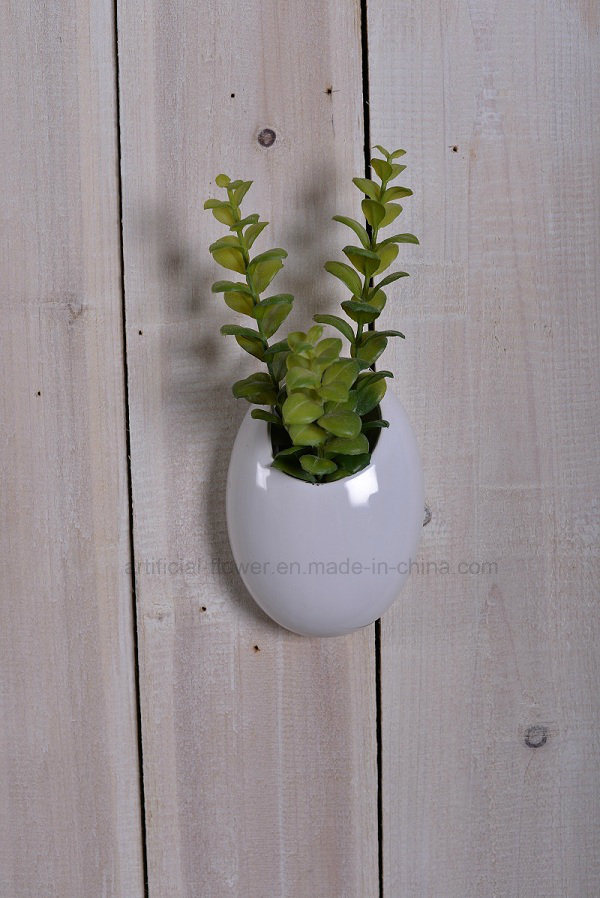 Various Artificial Plants (Stinkweed Grasses, Fern etc) in Hanging Ceramic Pot (S) / (L) for Decoration