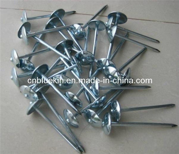 Umbrella Head Roofing Nails (R-4101655)