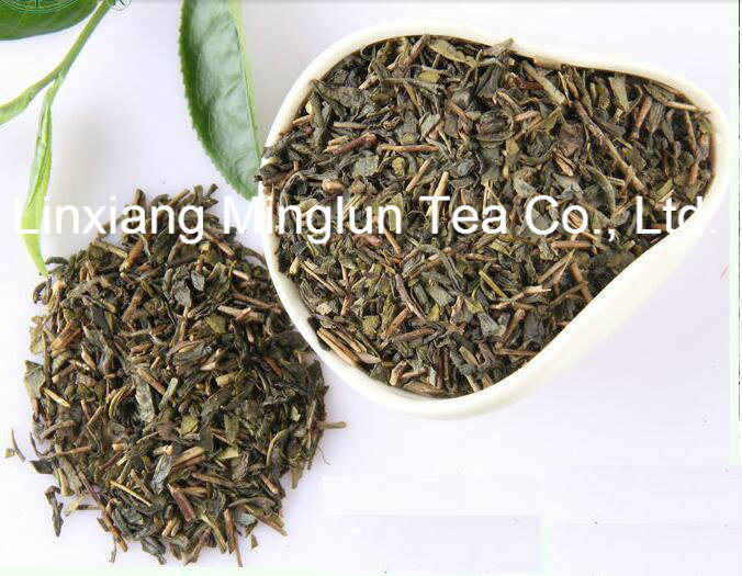 Cheap Tea Uzbekistan 9366 Organic Tea Leaf Green Tea