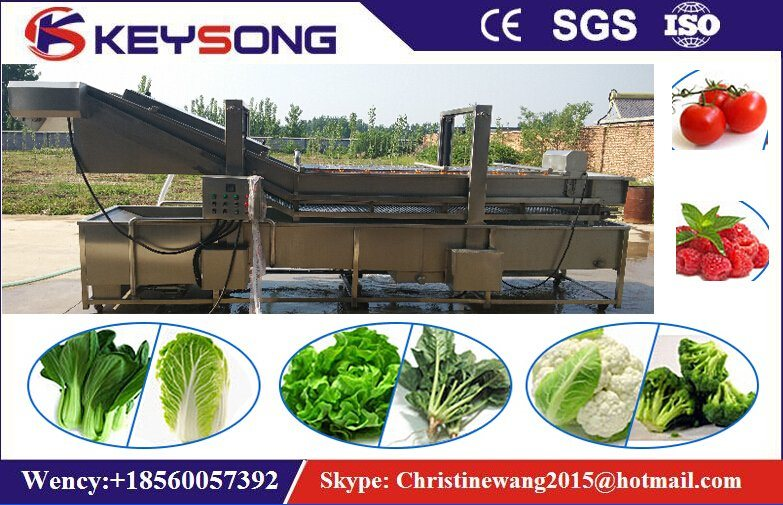 Industrial Vegetable Fruit Washing Machine