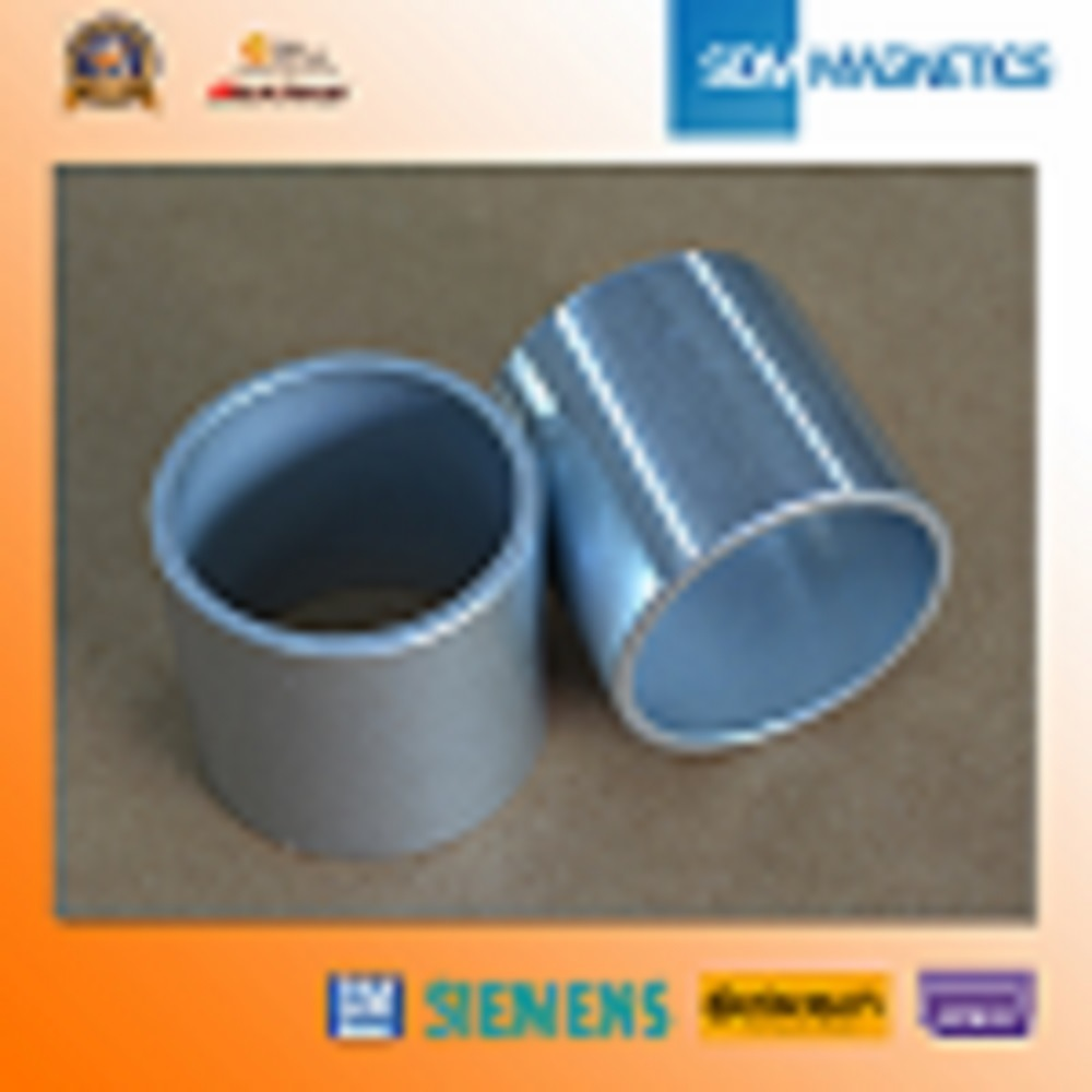 14 Years ISO/Ts16949 Permanent Neodymium Ring Magnet