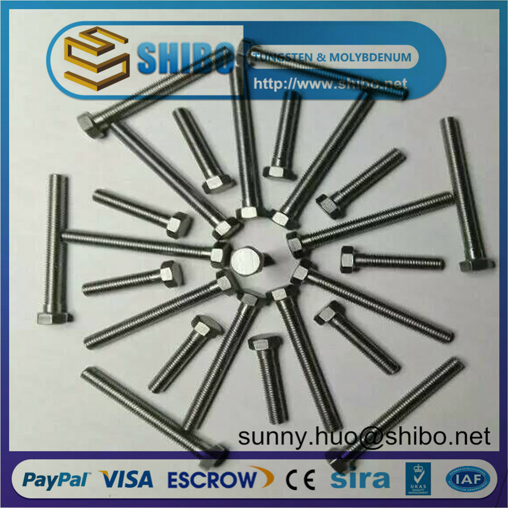 Top Quality Molybdenum Bolts and Screws
