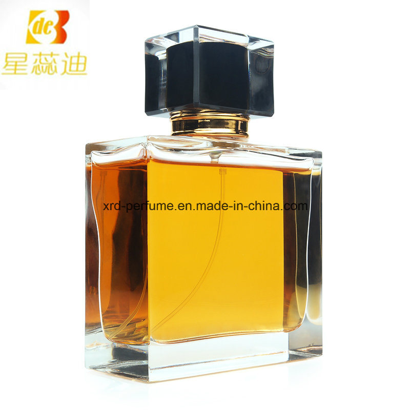 Factory Designer 100ml Men Perfume