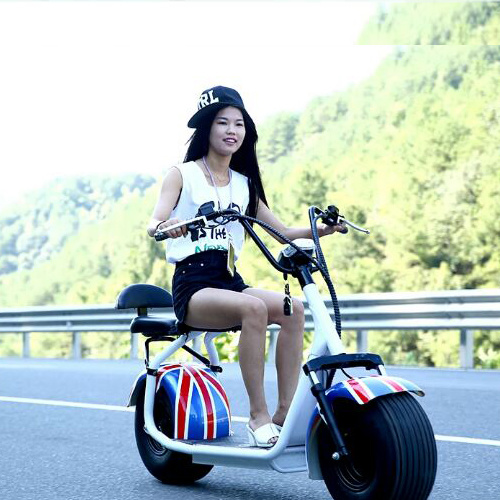 Professional Manufacturer of Electric Scooter 1000W Power with Ce