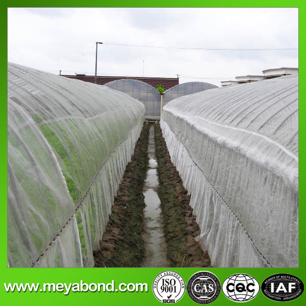 Wholesale PE Transparent Agriculture Anti Insect Bird Net for Plants Cover