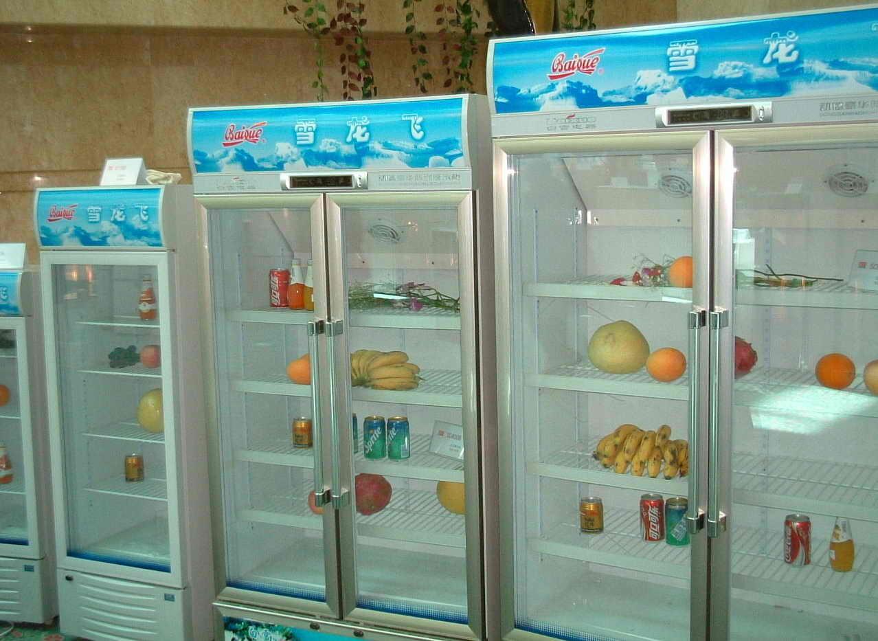 ������� ���� ����� ������� ���� Refrigerator-Deep-Fr