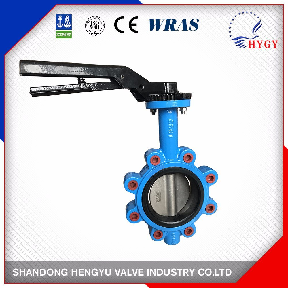 12 Inch Lug Type Flange Butterfly Valve