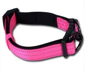 Pet Product Dog Cat Collar (C009)