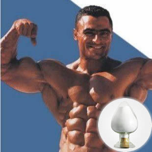 (CAS No: 1255-49-8) Healthy and Effectual Steroid Powder Testosterone Phenylpropionate