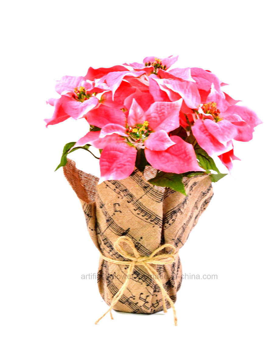 Colourful Vivid Artificial Christmas Flowes 7 Heads with Paper Packaging for Decoration