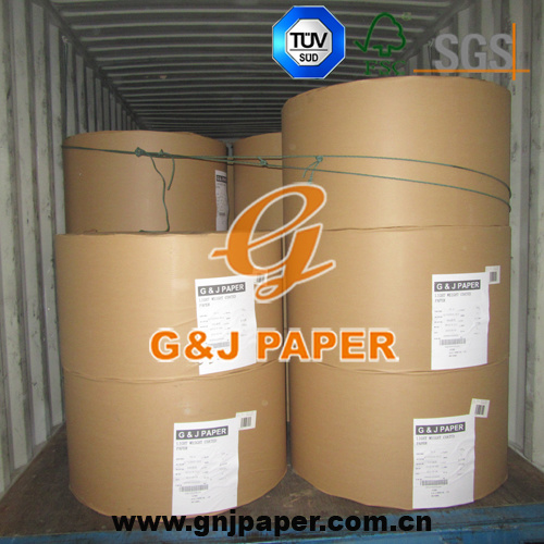 650mm Roll Width Coated Matte Paper in Roll for Printing