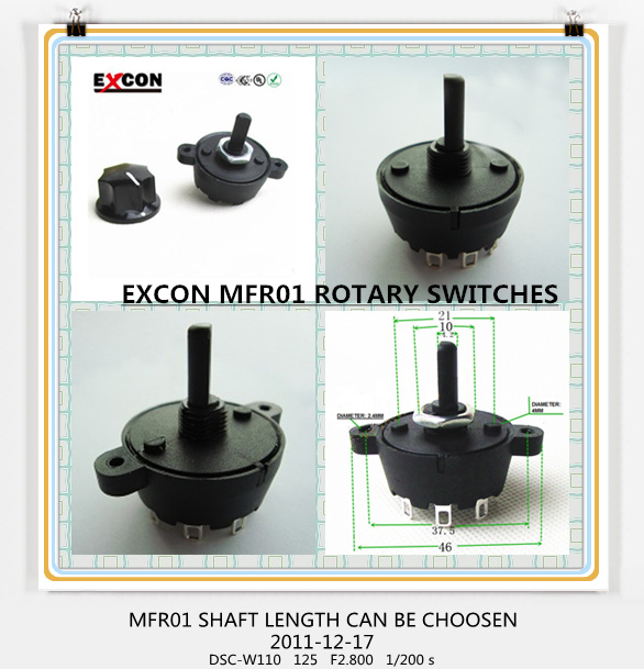 Rotary Switch for Home Appliance with 1 to 10 Position Switch